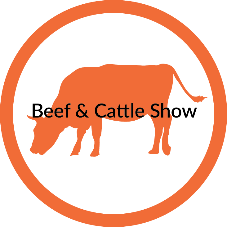 Beef+Cattle.png