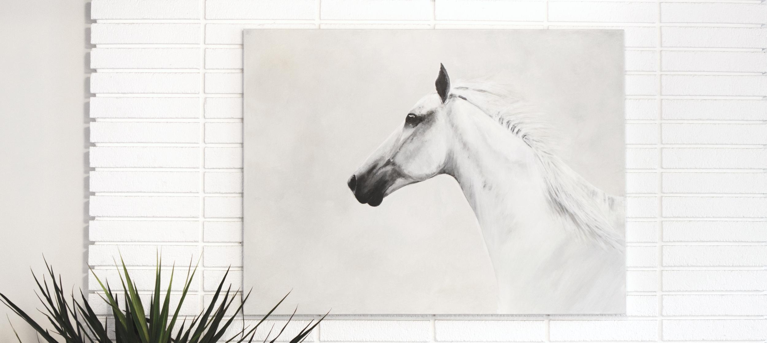 horse website banner.jpg