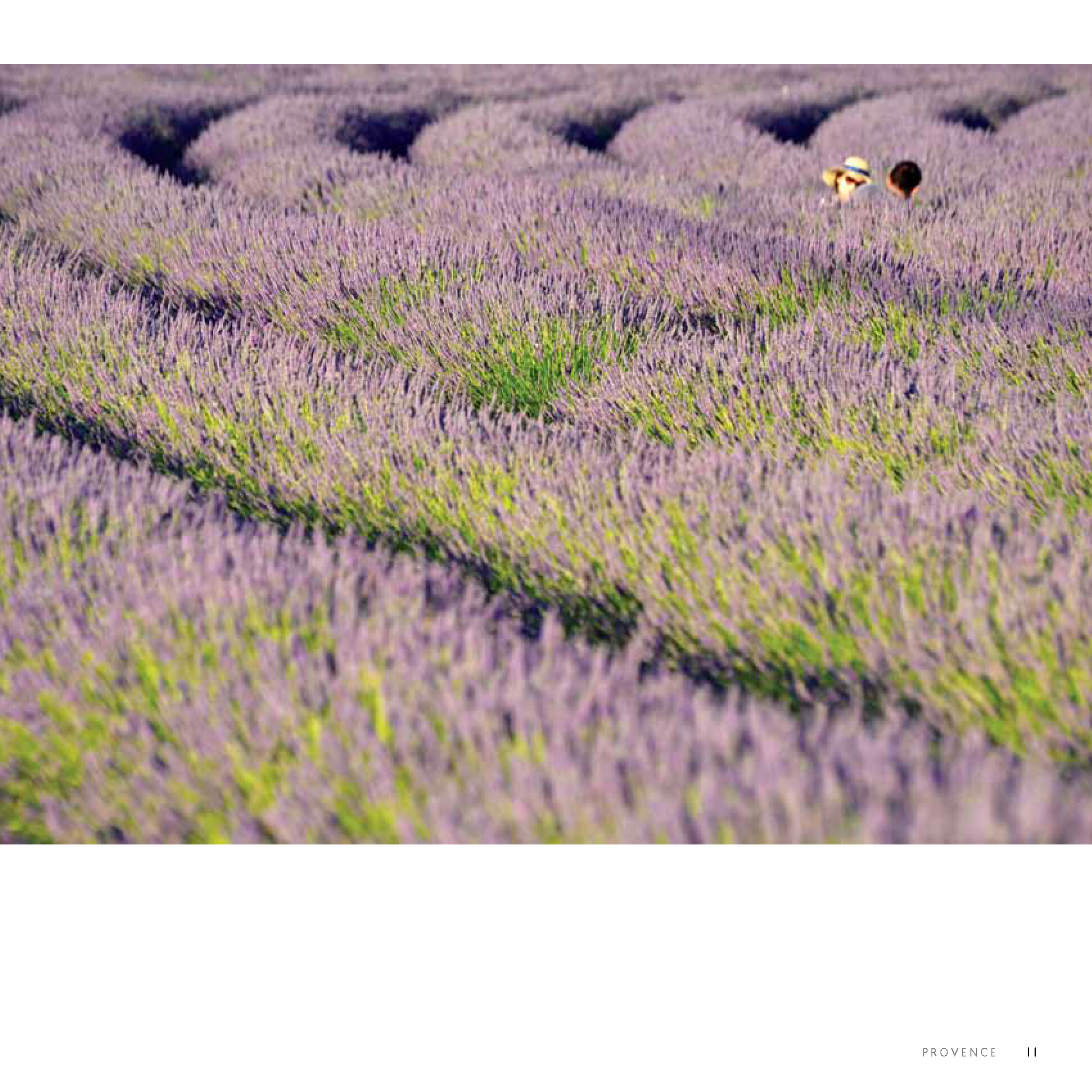 Provence Food and Wine_Page_09.png