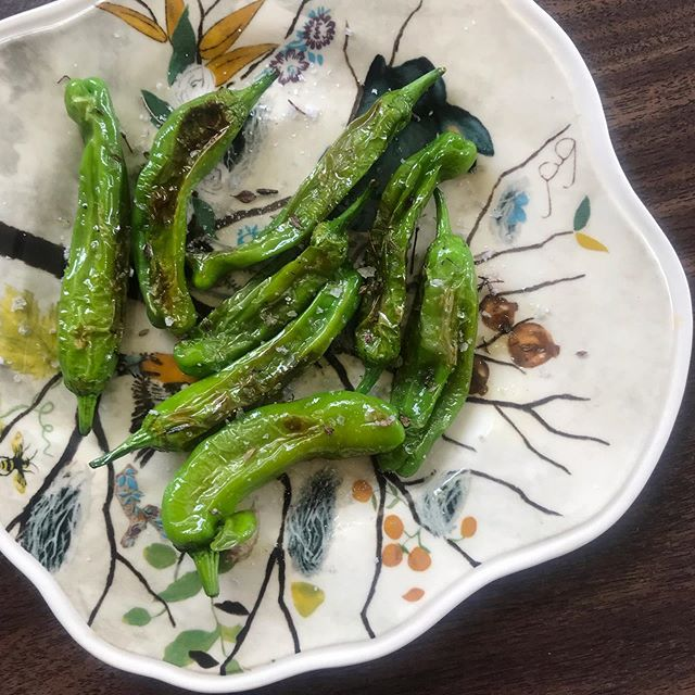 Perfectly delicious shishito peppers from our neighbour's garden, fried in our cast iron and topped with flaked sea salt 🥰