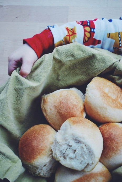 Orange Honey Wheat Rolls