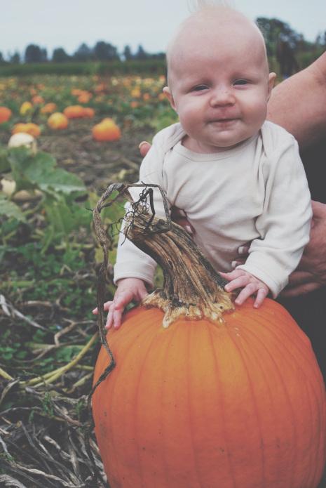 pumpkin-post-7.jpg
