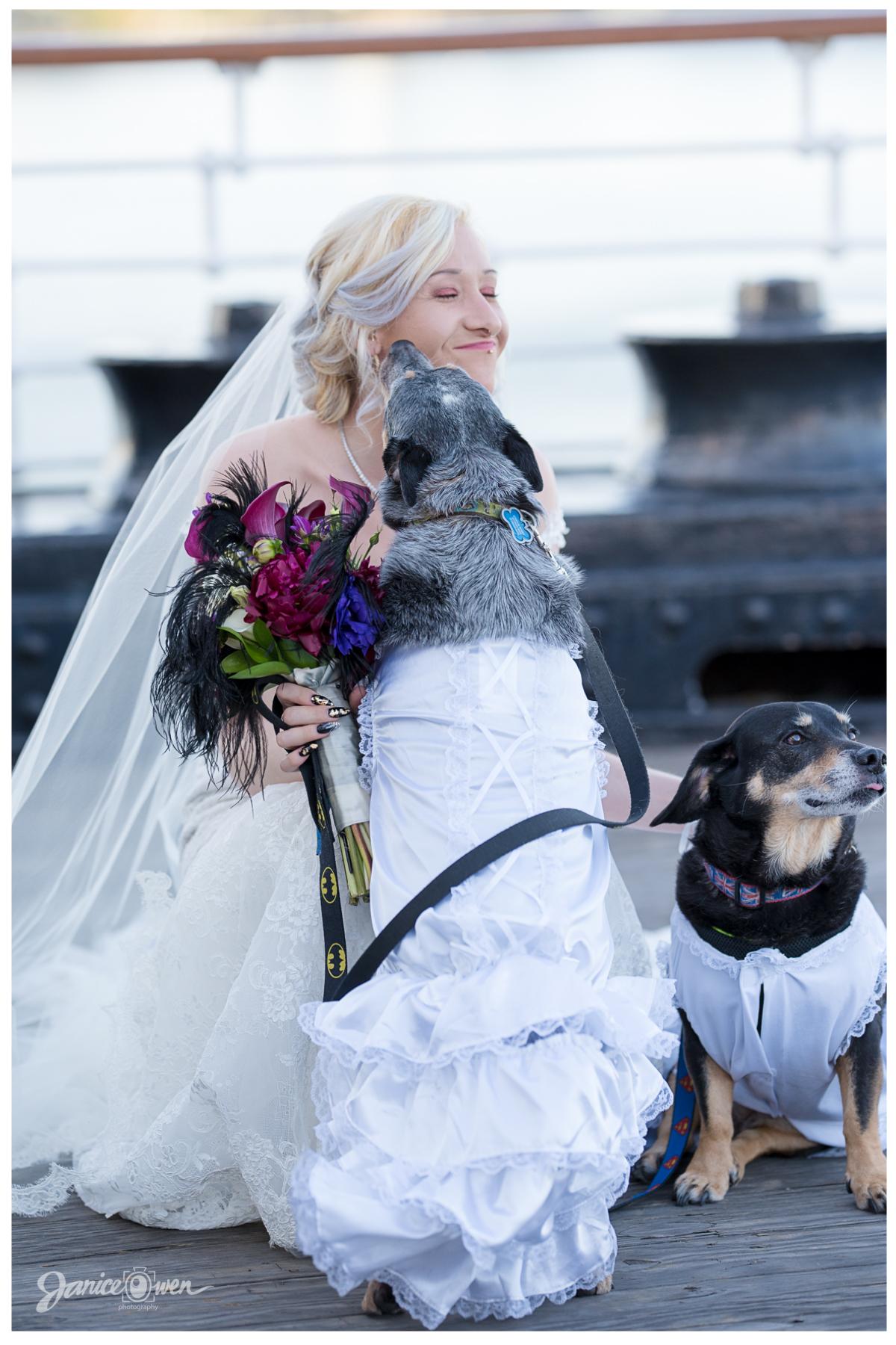 janiceowenphotography_wedding64.jpg