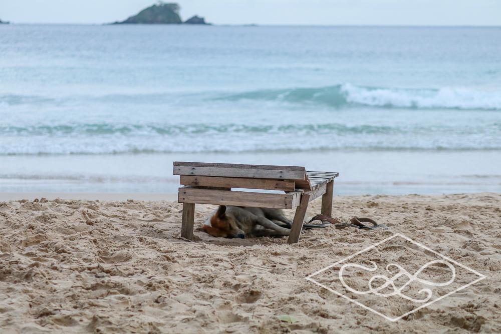 1.11.17 El Nido-Nacpen Beach-129.jpg