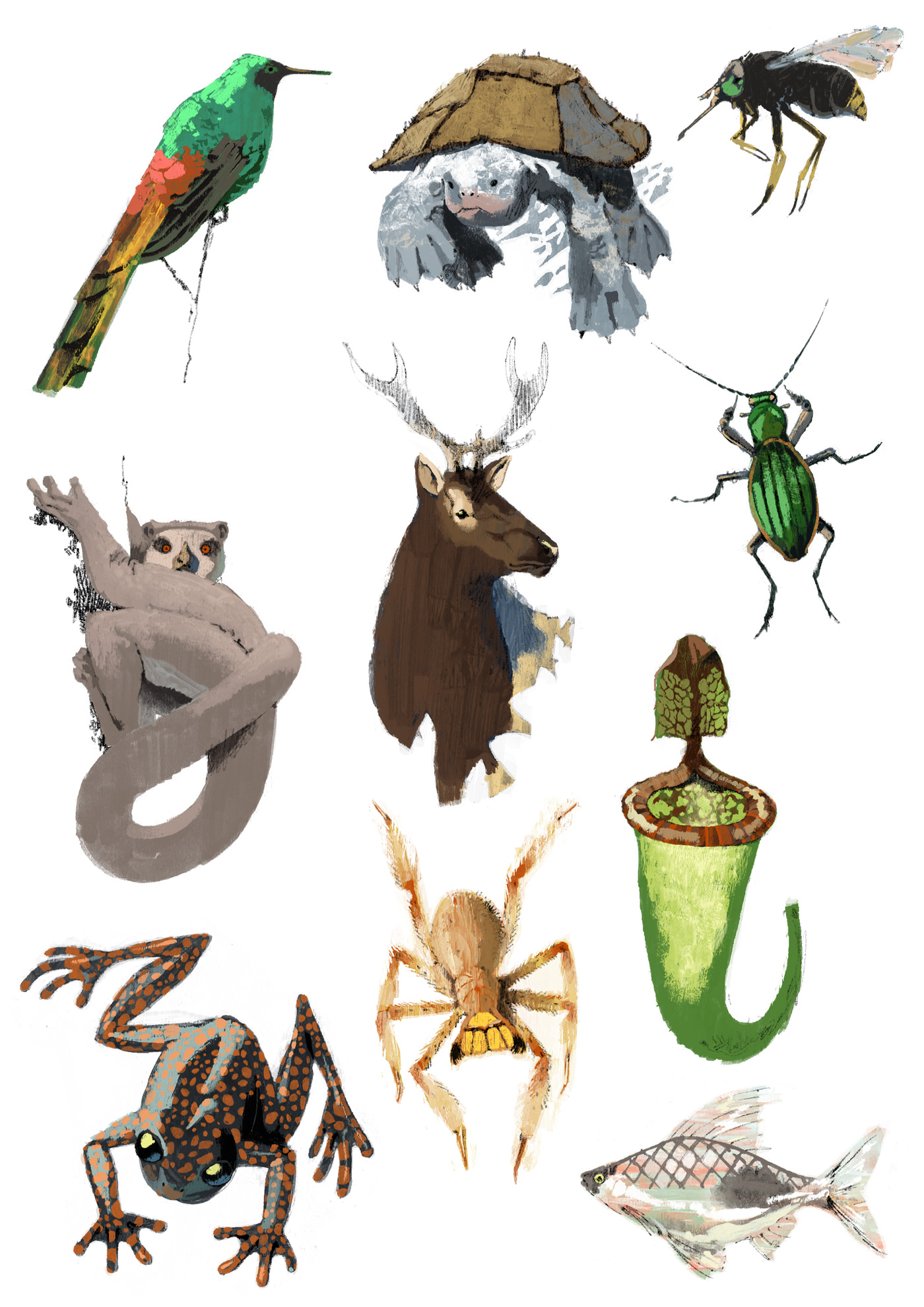 An assortment of creatures for The Observer by Marc Aspinall