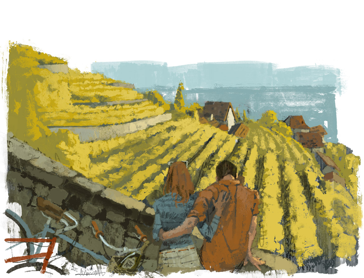 Slopes of Lavaux for Le Parisien Magazine by Marc Aspinall