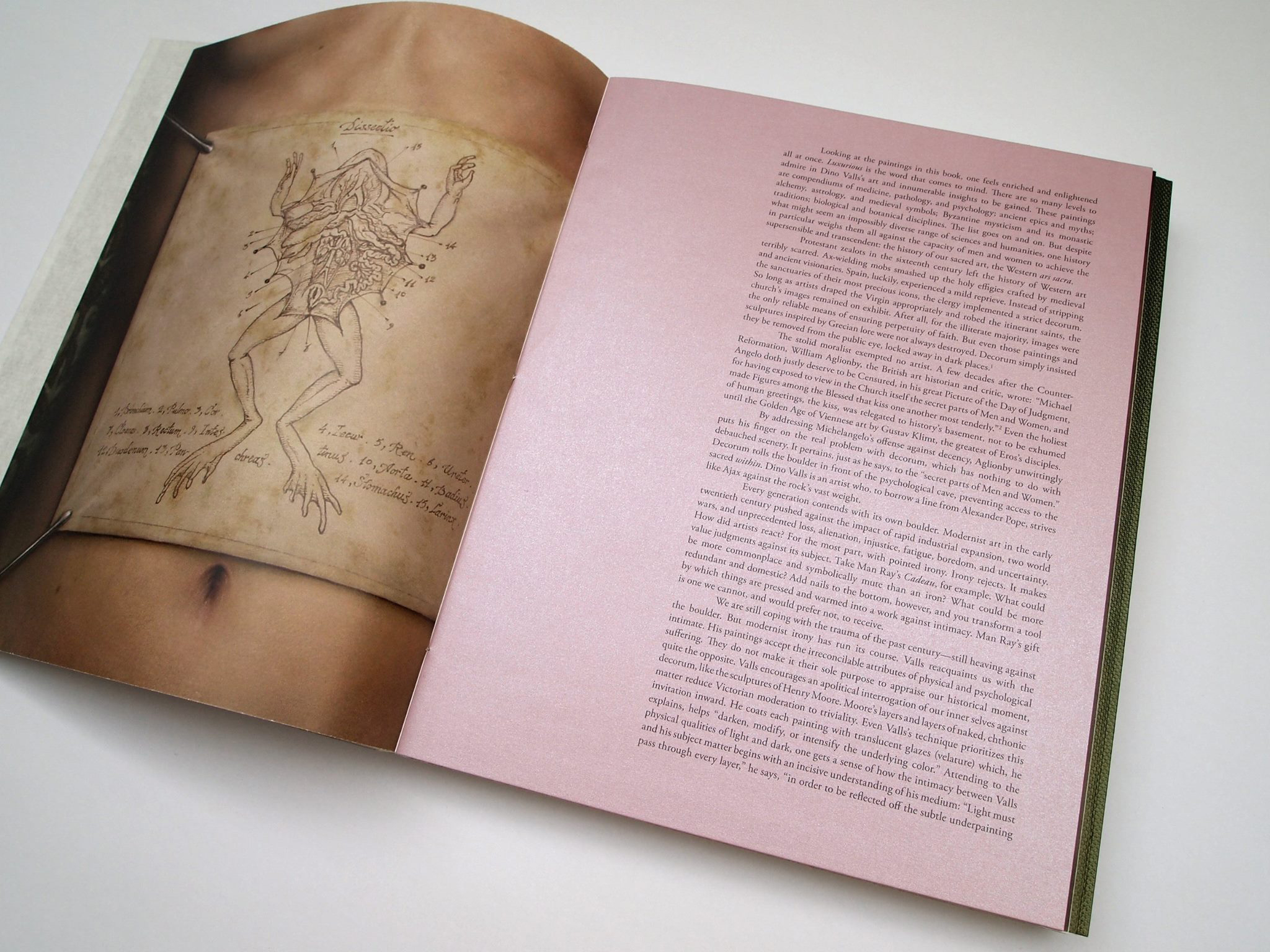 3. Buchteil (von hinten aufzuschlagen) – Text von Steven Brown