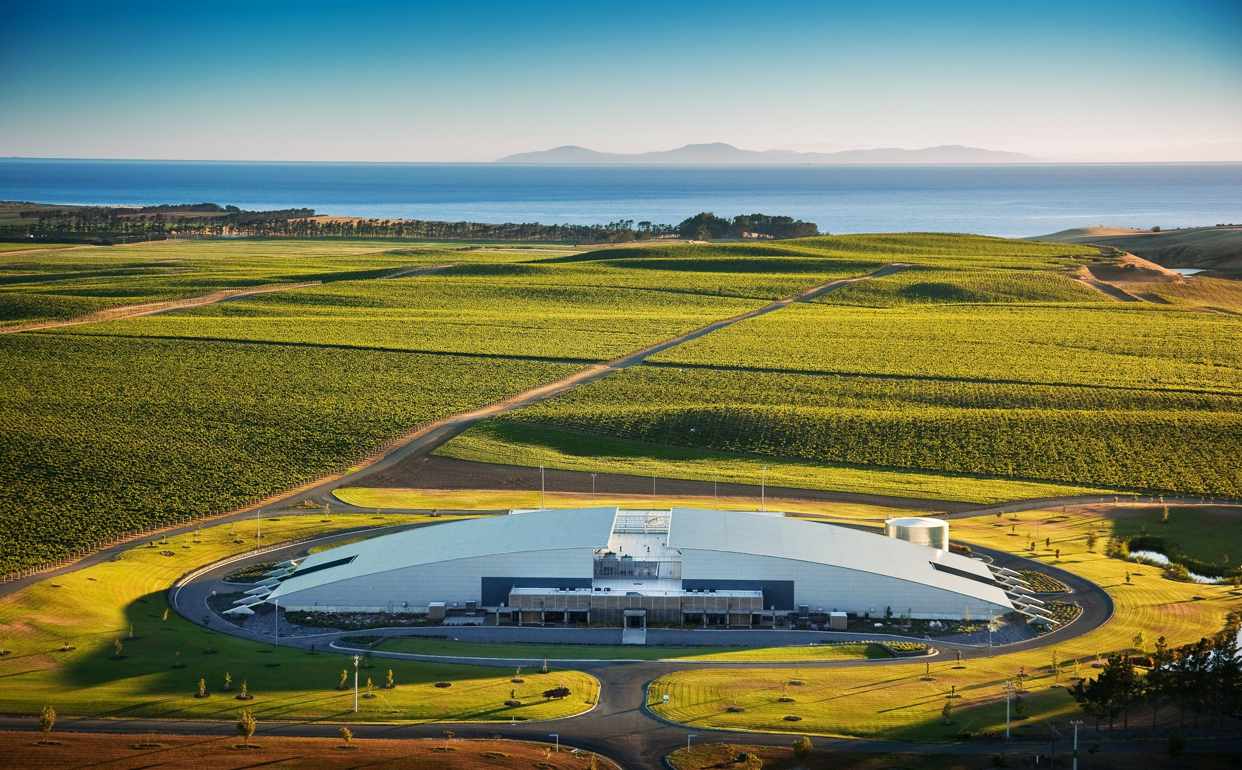 Yealands_Winery_within_the_vines-0041397.jpg