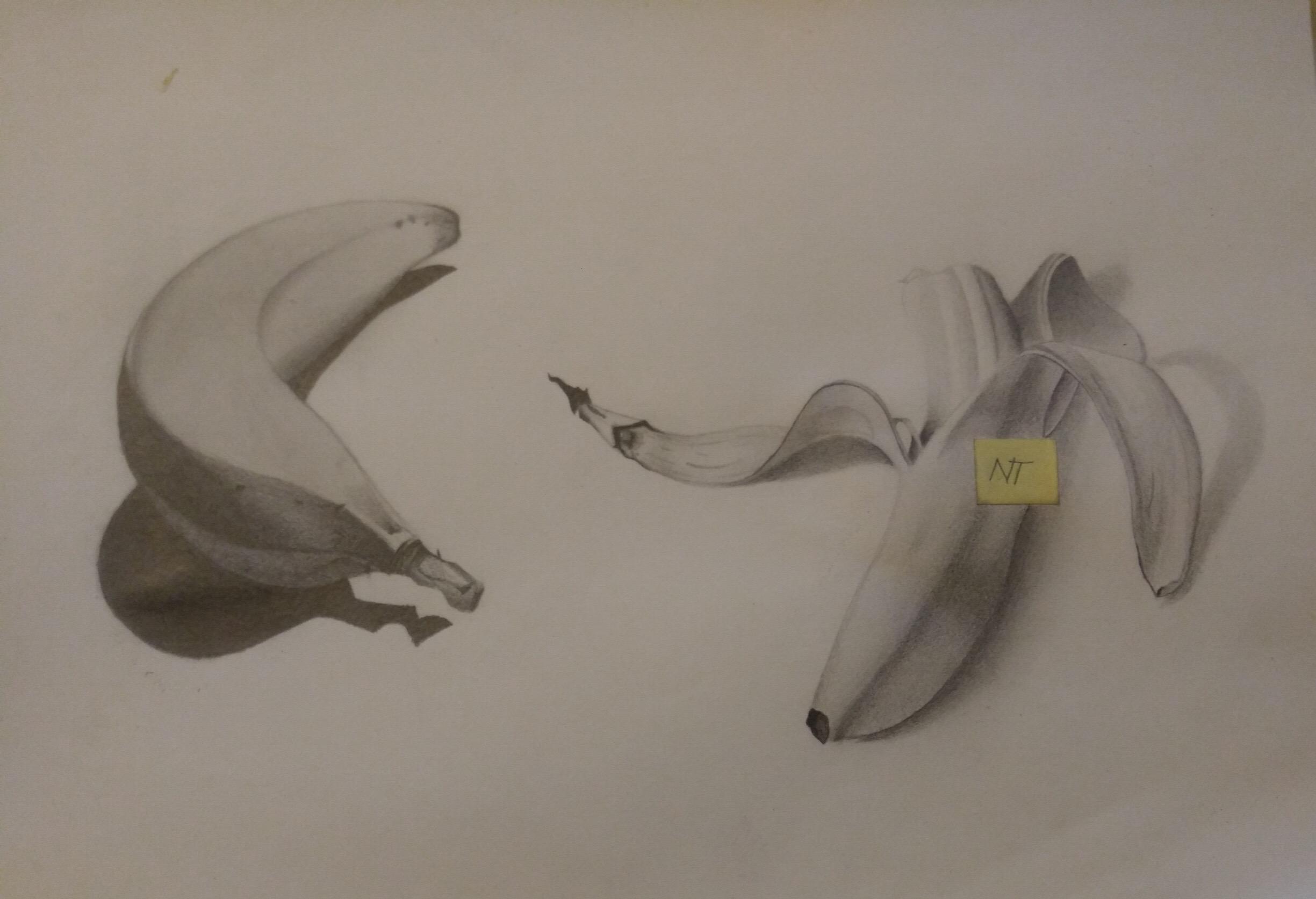 Pencil, still life. Age 14