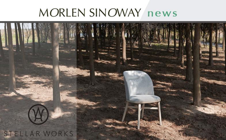 Stellar Works Bund Dining chair at Morlen Sinoway