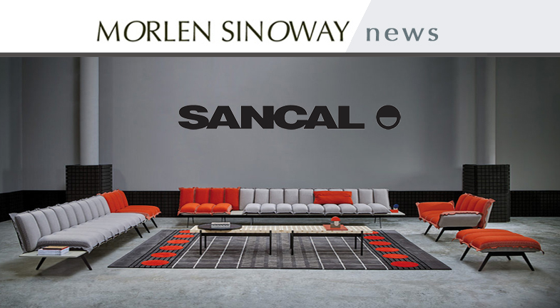 MSA_NEW BLOG FORMAT 2019 SANCAL copy.jpg