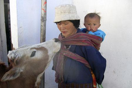 OA-AQ045_Bhutan_20080116161926.jpg