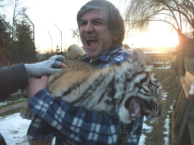 Jade was rescued from a circus as a baby tiger