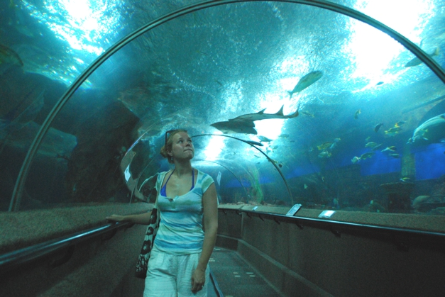 Moving walkway under the 'sea'