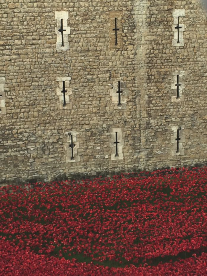 Sophie Radcliffe, Challenge Sophie, Tower of London Poppies