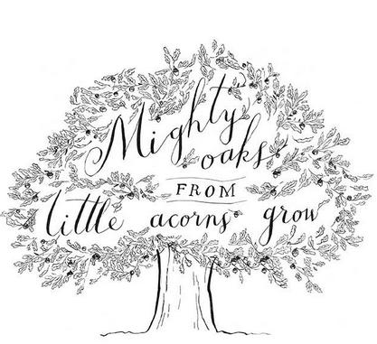 Might oaks grow from little acorns