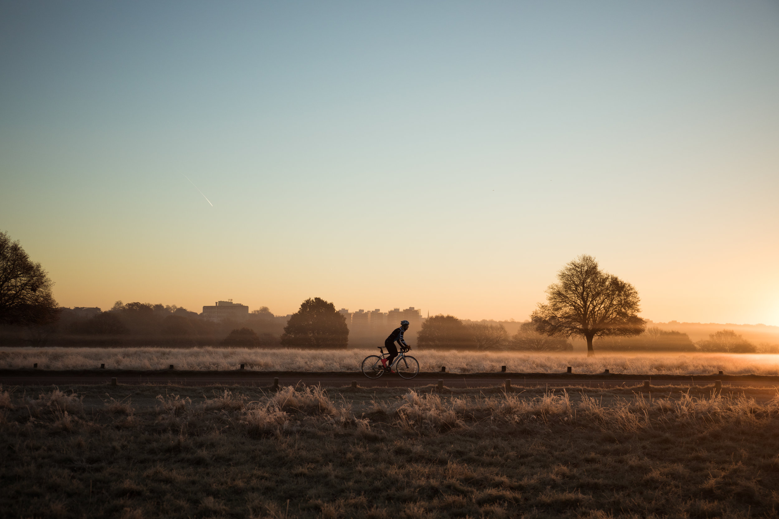sunrise cycle, sophie radcliffe, january motivation