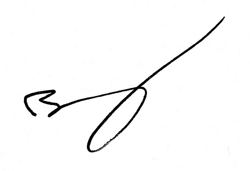 BV_Signature.jpg