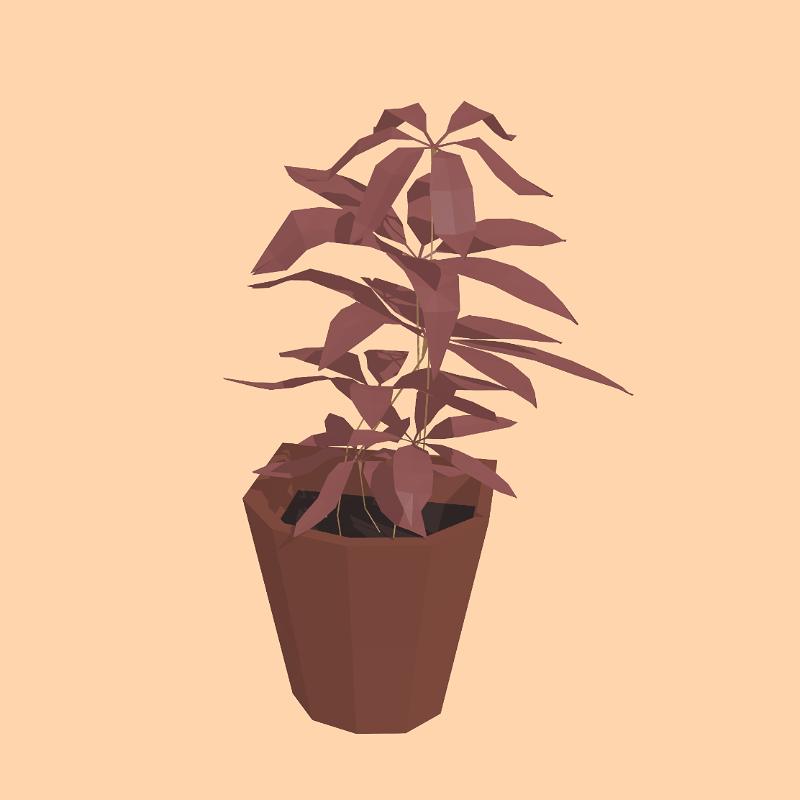 Plant 04