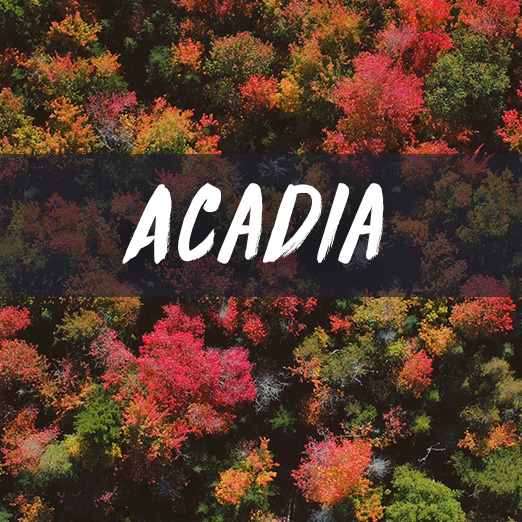 acadia_V2.jpg