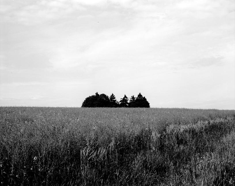12-01 Cemetery, Neuhof88.jpg