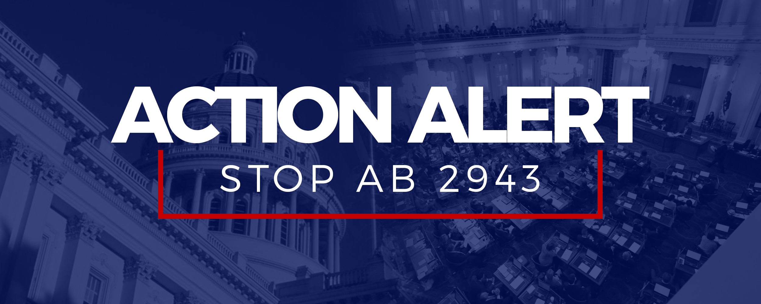 Action Alert Ab2943 copy.jpg