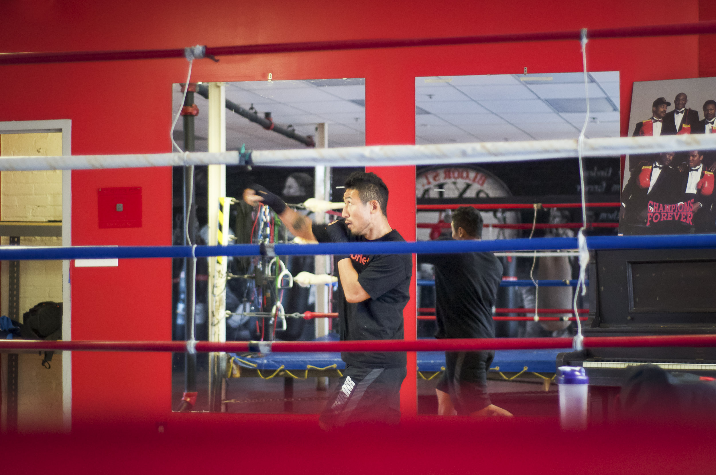 Boxing Club-773445931.jpg