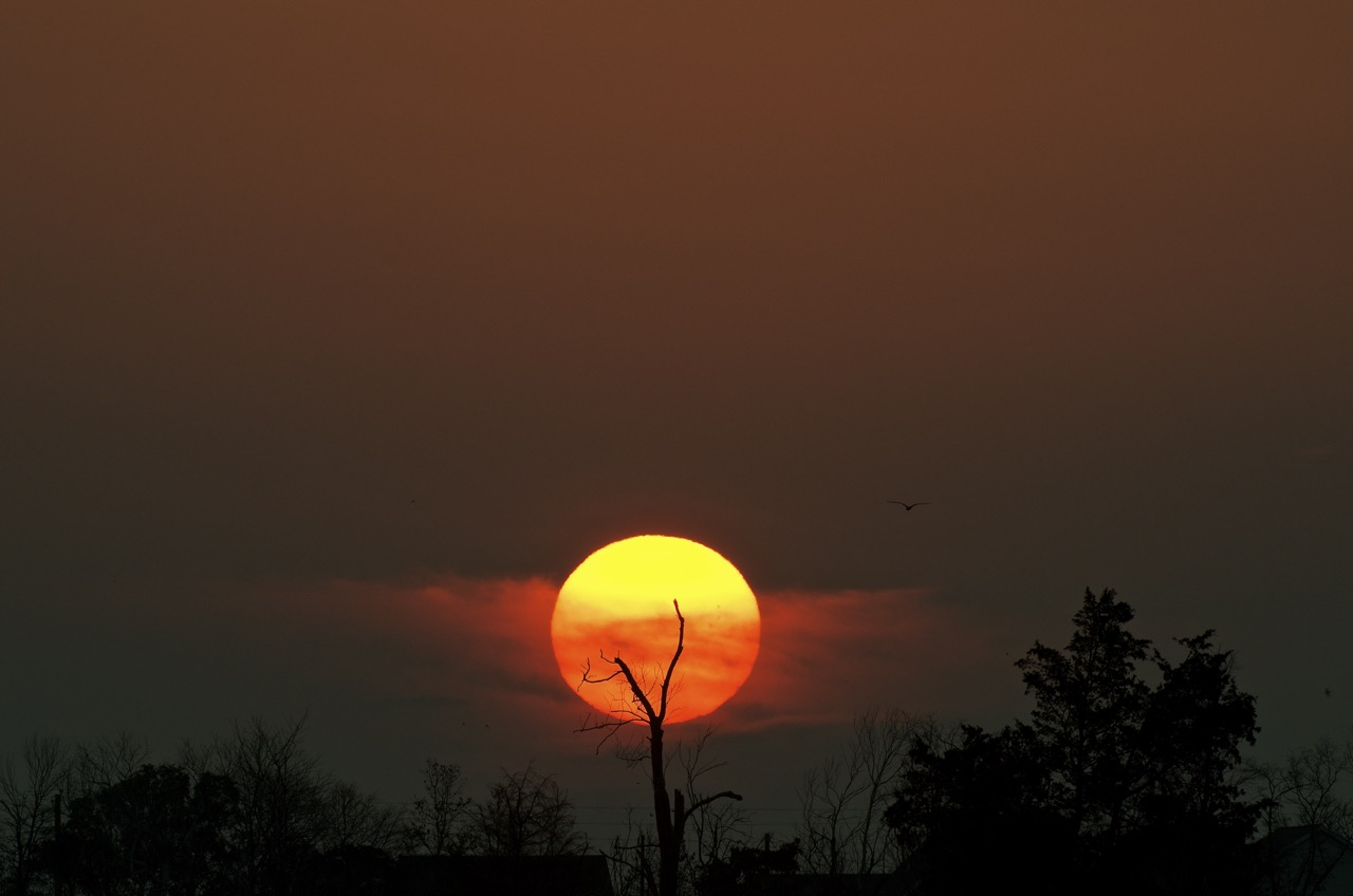 Sunrise Over Prime Hook