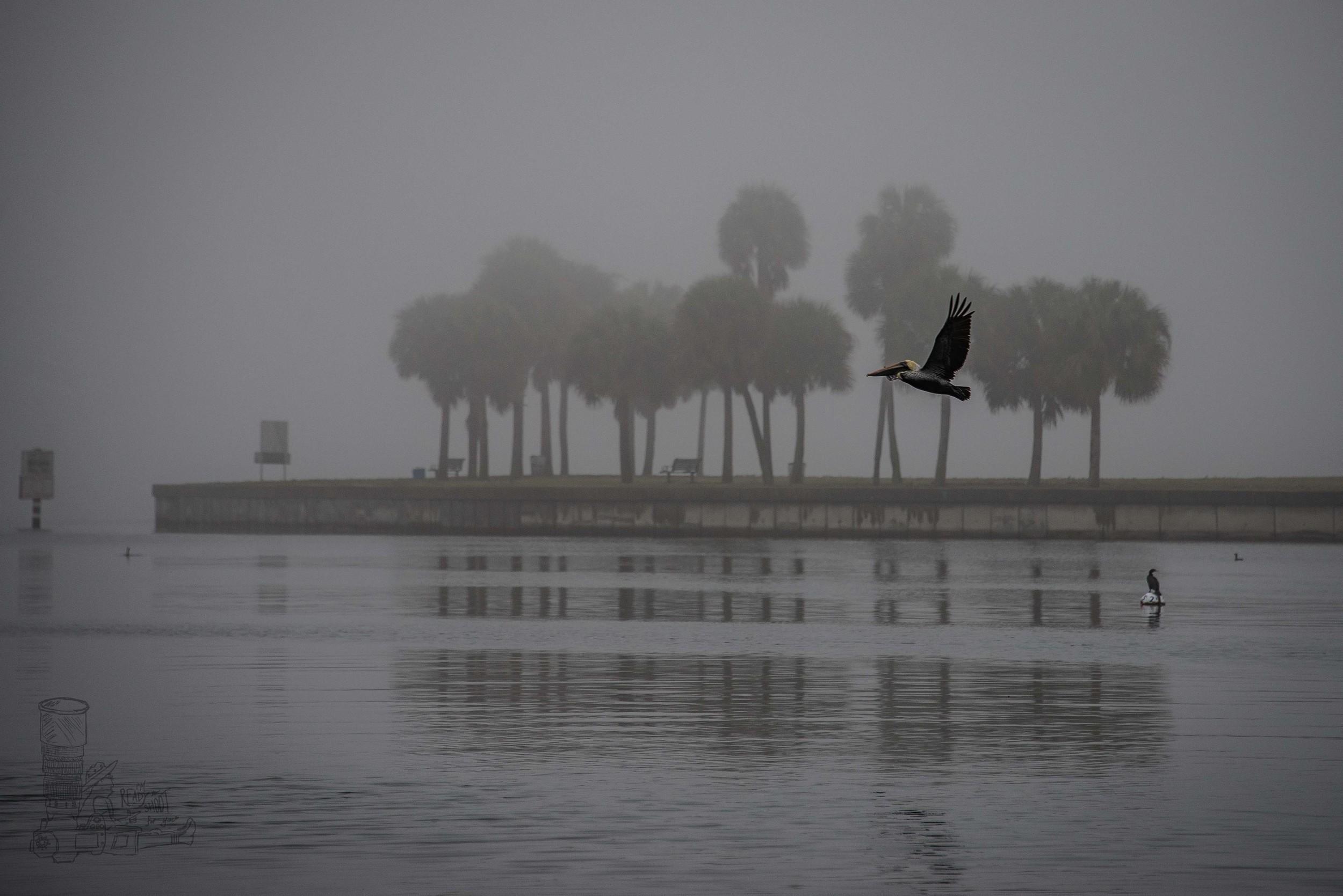 St Petersburg Fog