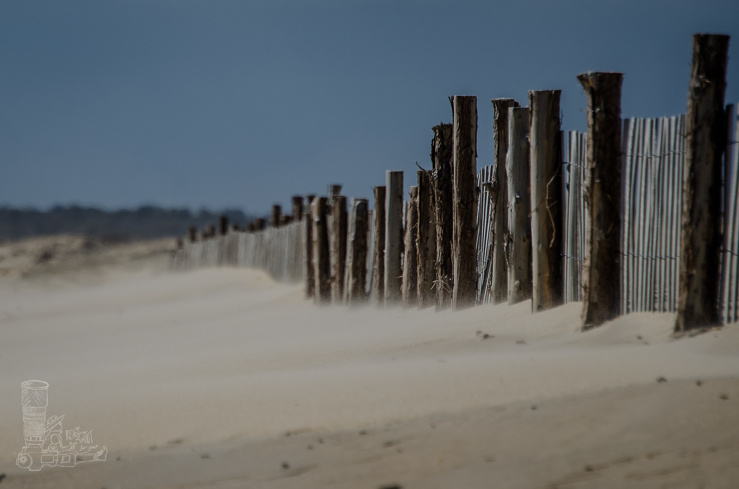 Sandy Posts