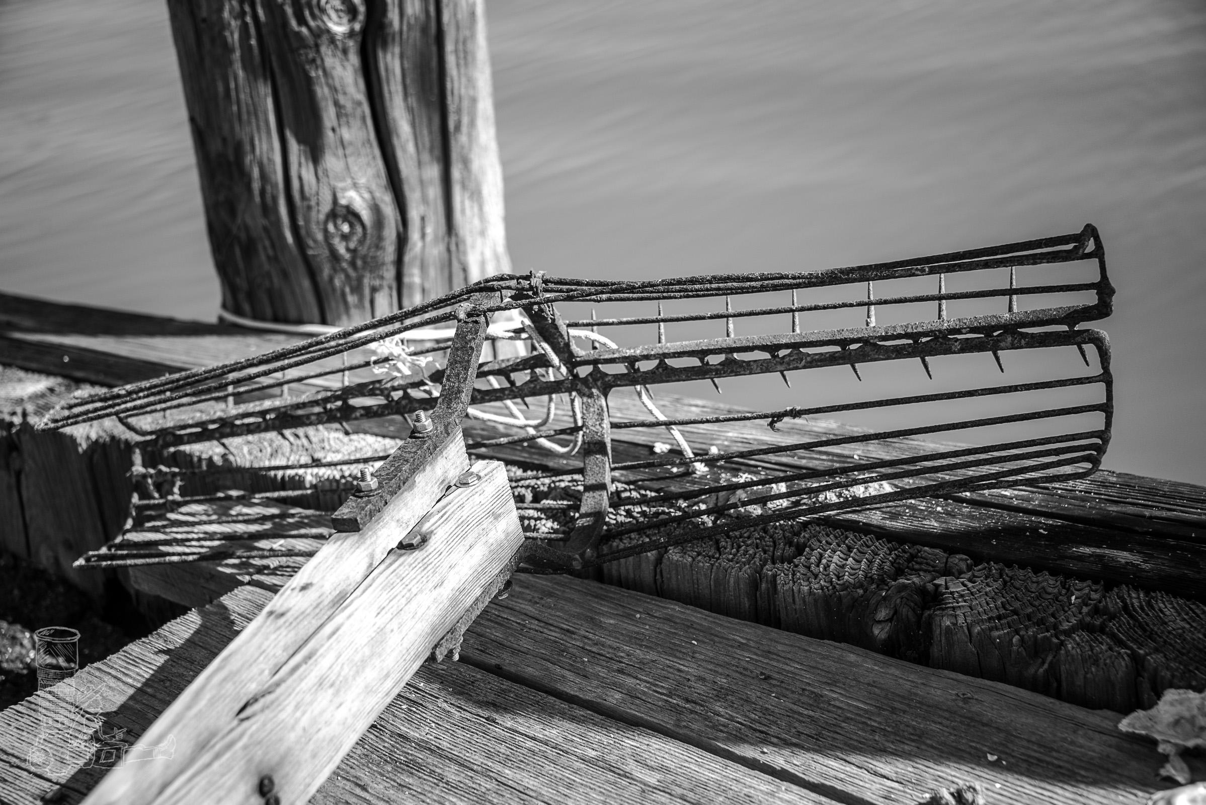 Oyster Rake
