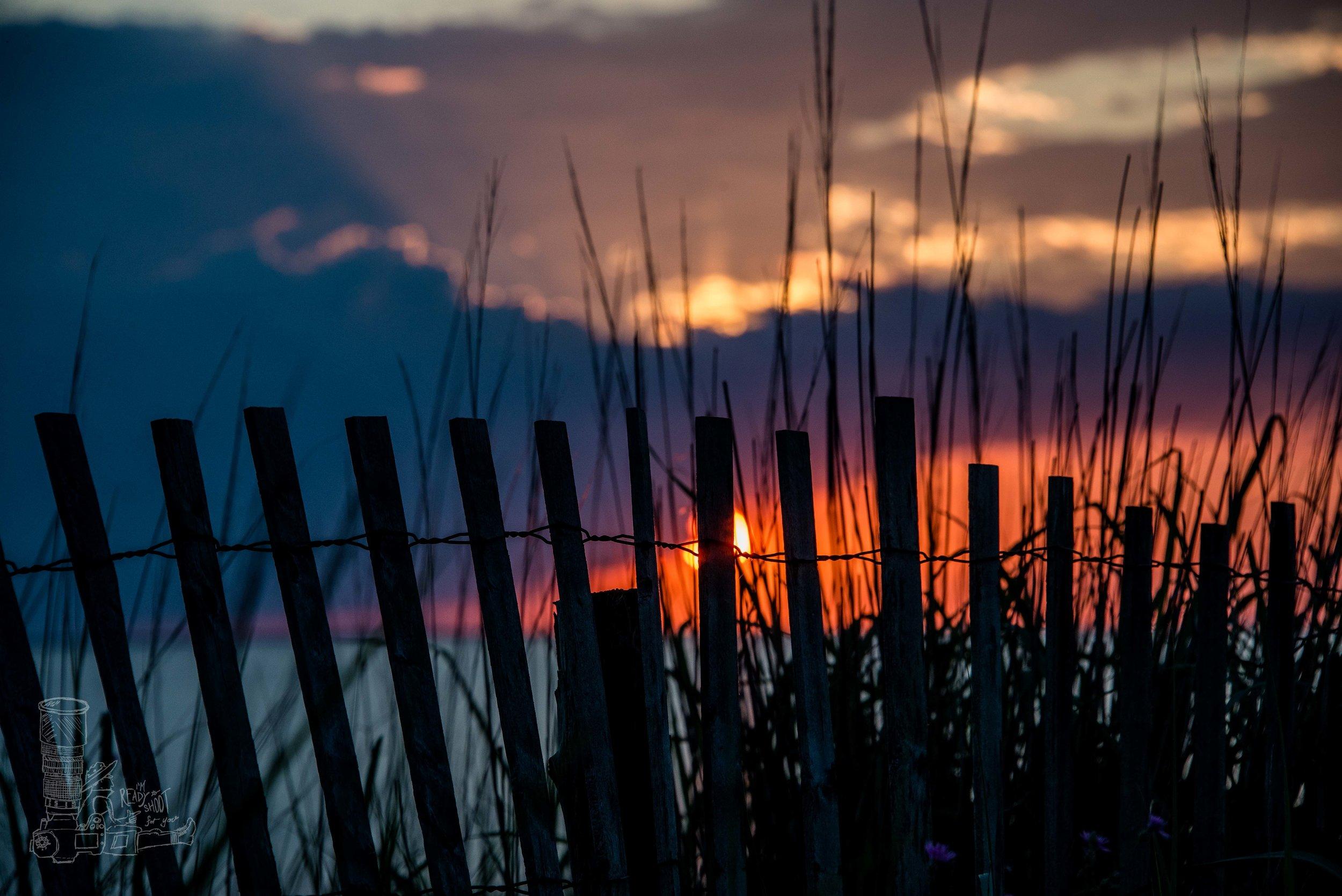 Lewes Beach Fence