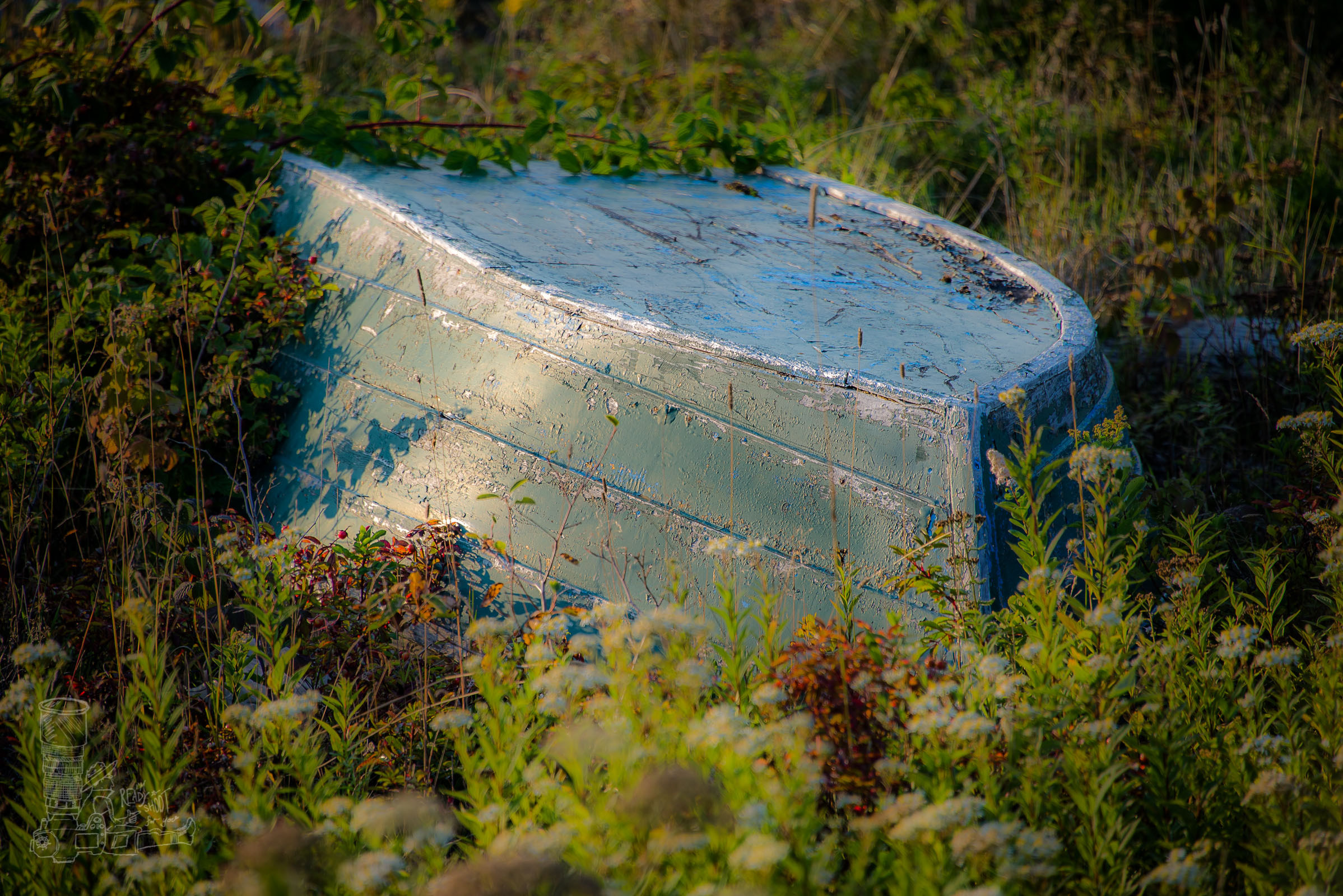 Old Dinghy in the Grasses