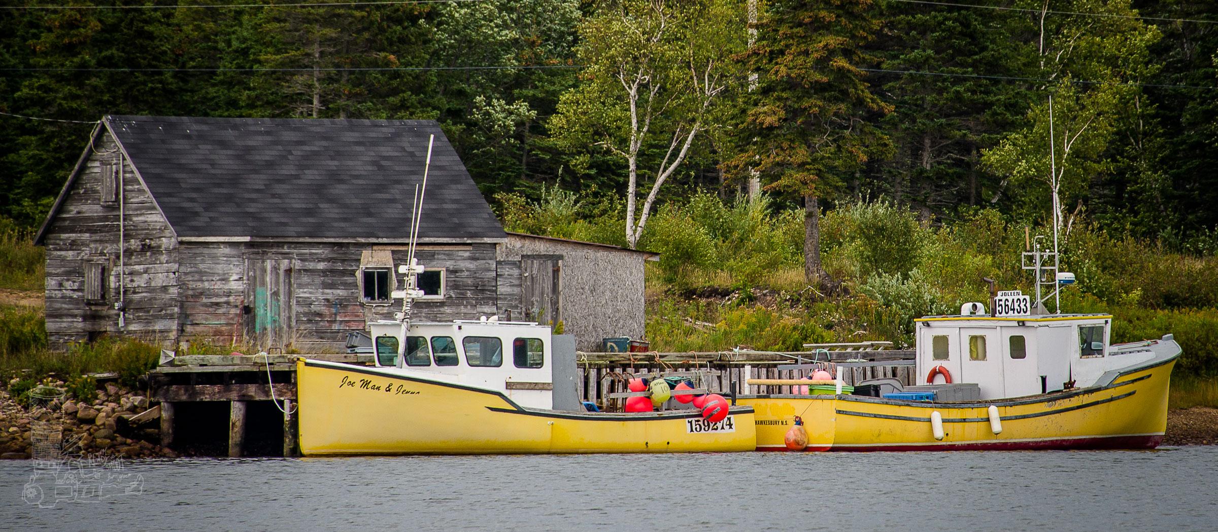 Cape Breton Yellows