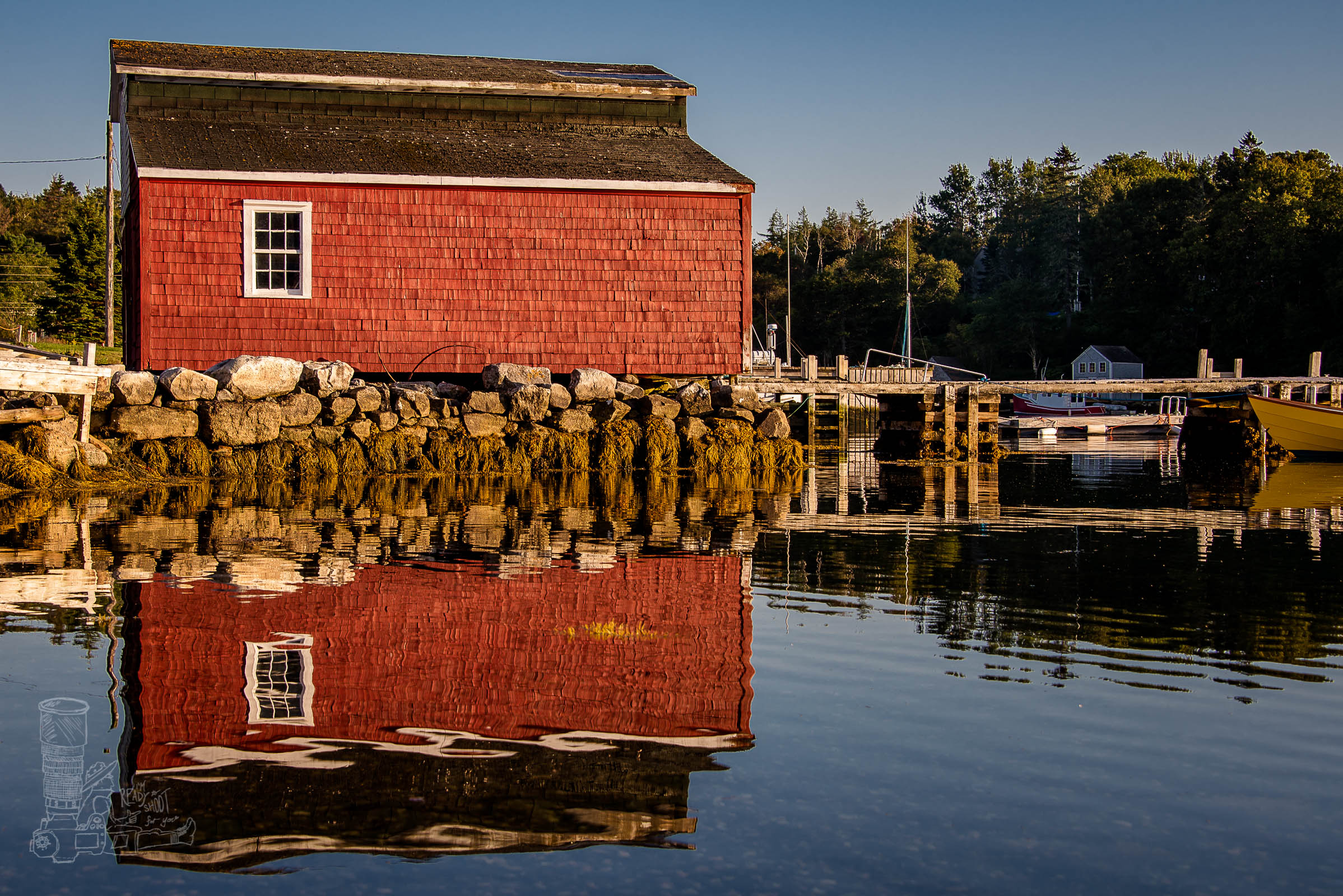 Cove Reflections