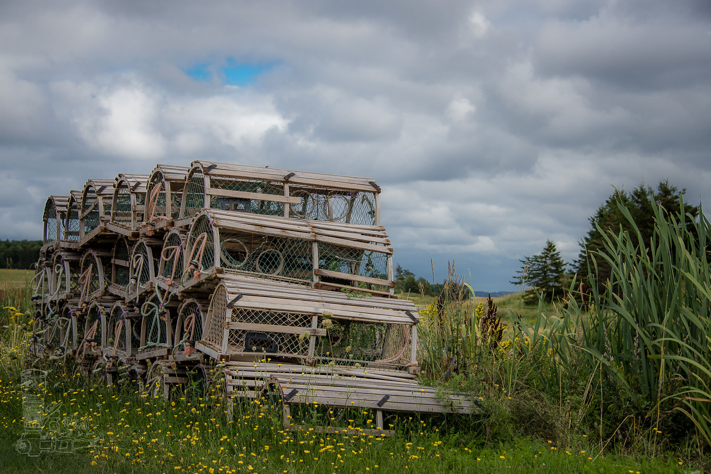 Lobster Traps of PEI