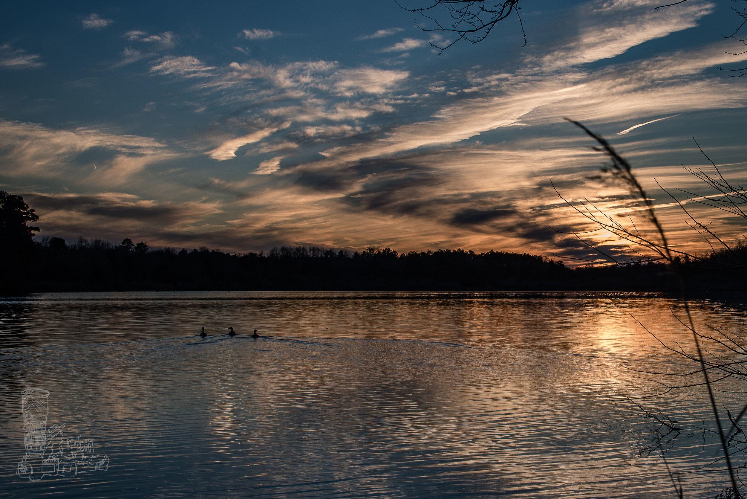Waples at Sunset