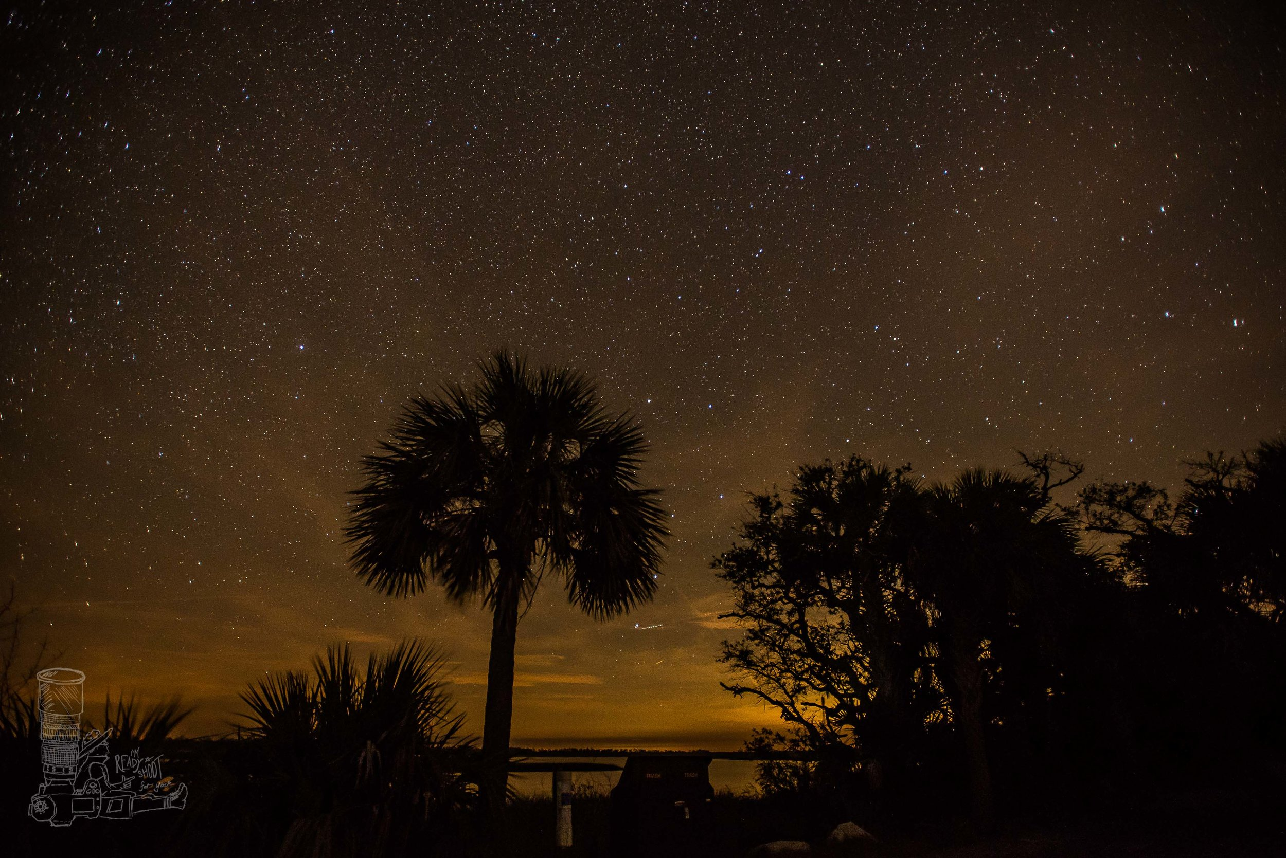 Night Sky of the Suwannee