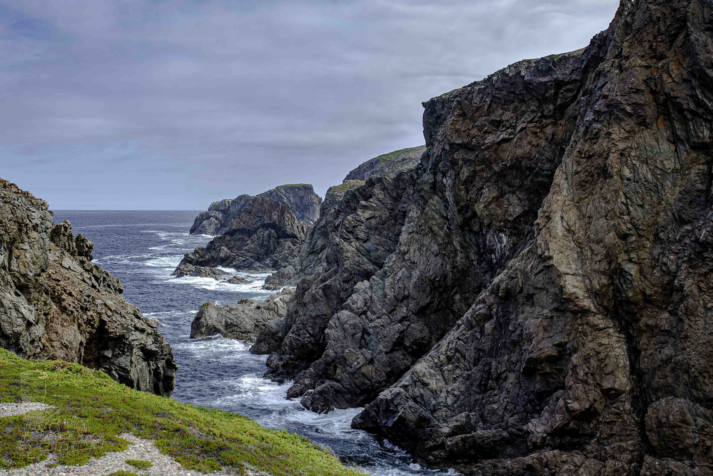 The Rugged Shoreline of Newfoundland