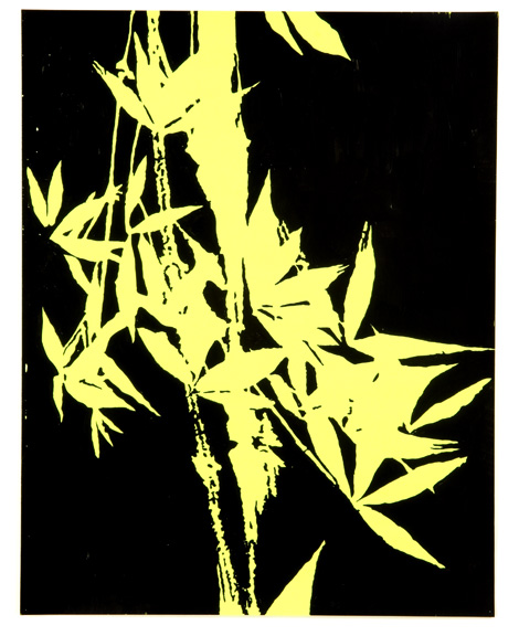 Midnight Bamboo (Warhol Museum)