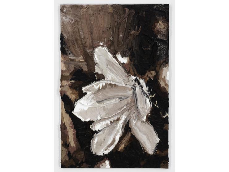 Pjätteryd Oil Painting: Sepia Orchid