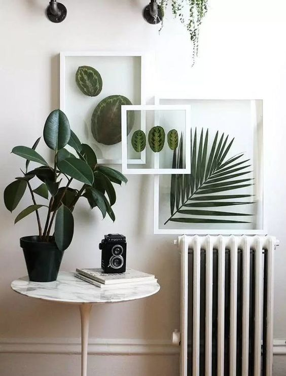 Never kill your plants again, with this beautiful tutorial to create floating frames!