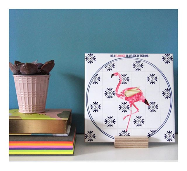 Saturday #shelfie 🥳 #flamingo #flamingoinaflockofpigeons #art #shelfdecor #homedecor