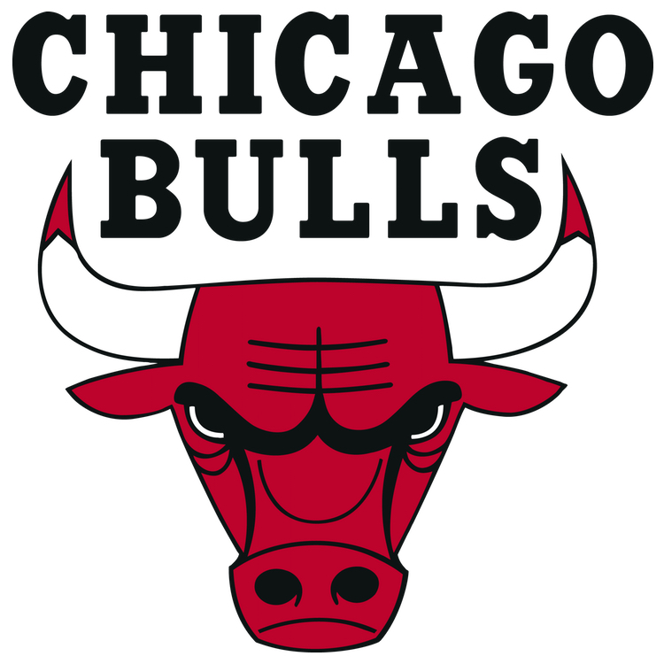 sq chicago bulls.jpg