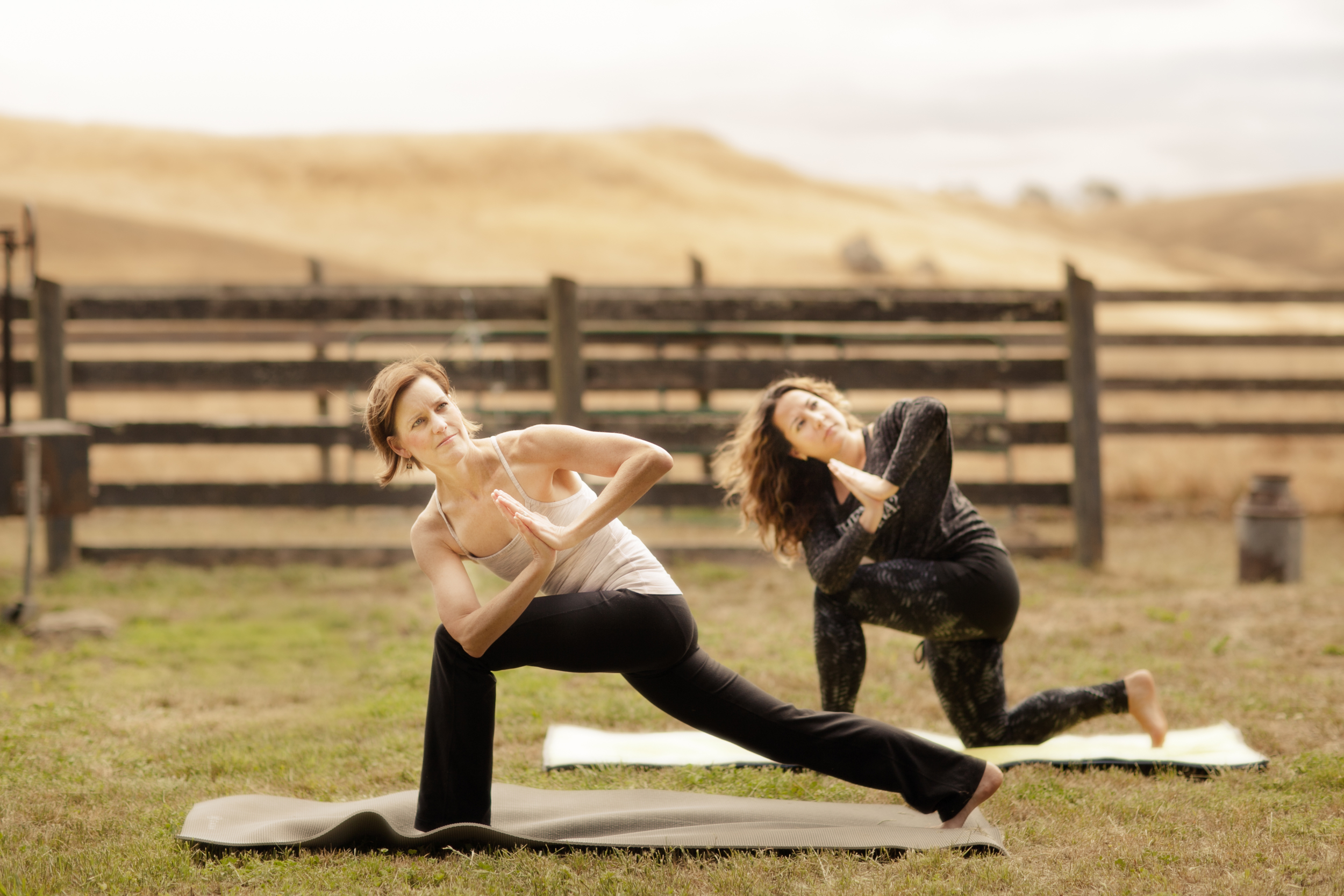 THF_stemple_yoga0165.jpg