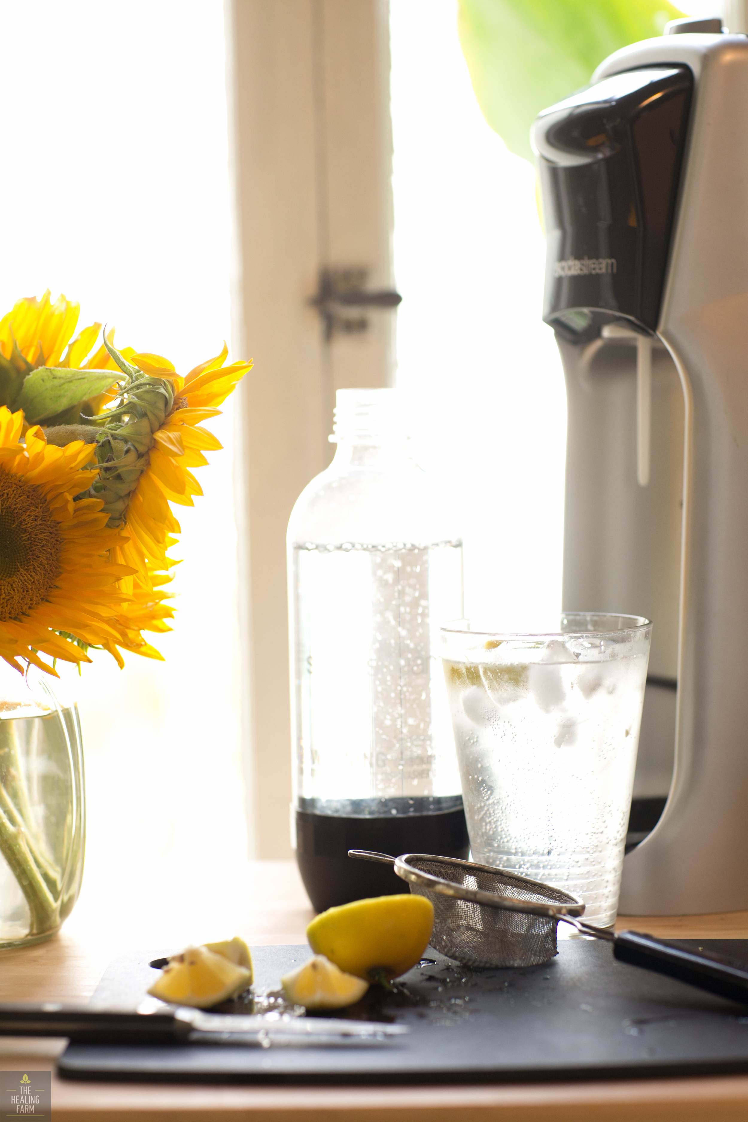 Soda Streamis a kitchen essential!