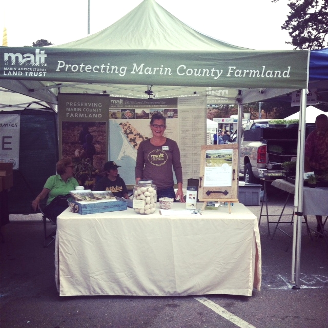 Me at the Marin Agricultural Land Trust Table - Marin Civic Center Farmer's Market