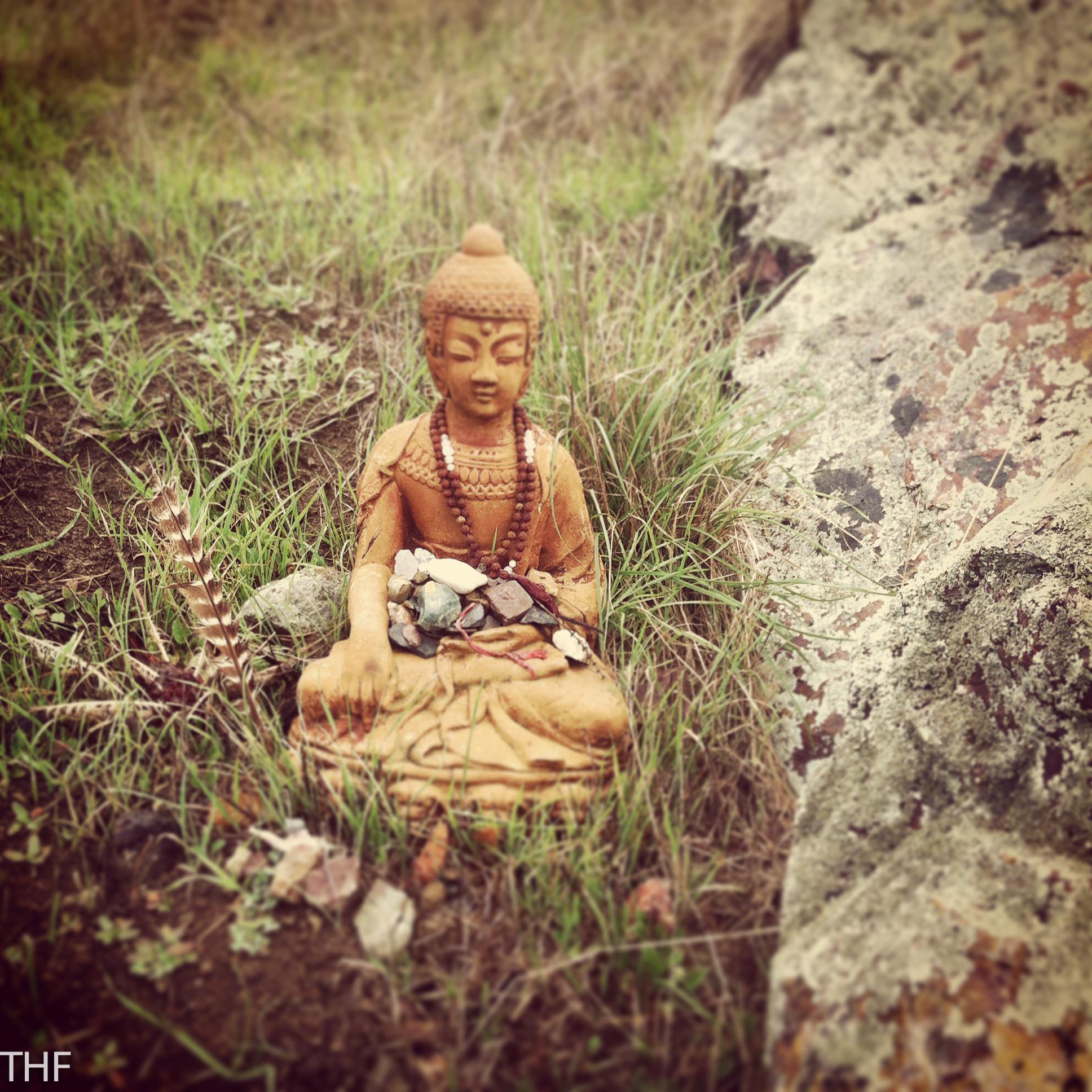 buddha0001-2.jpg