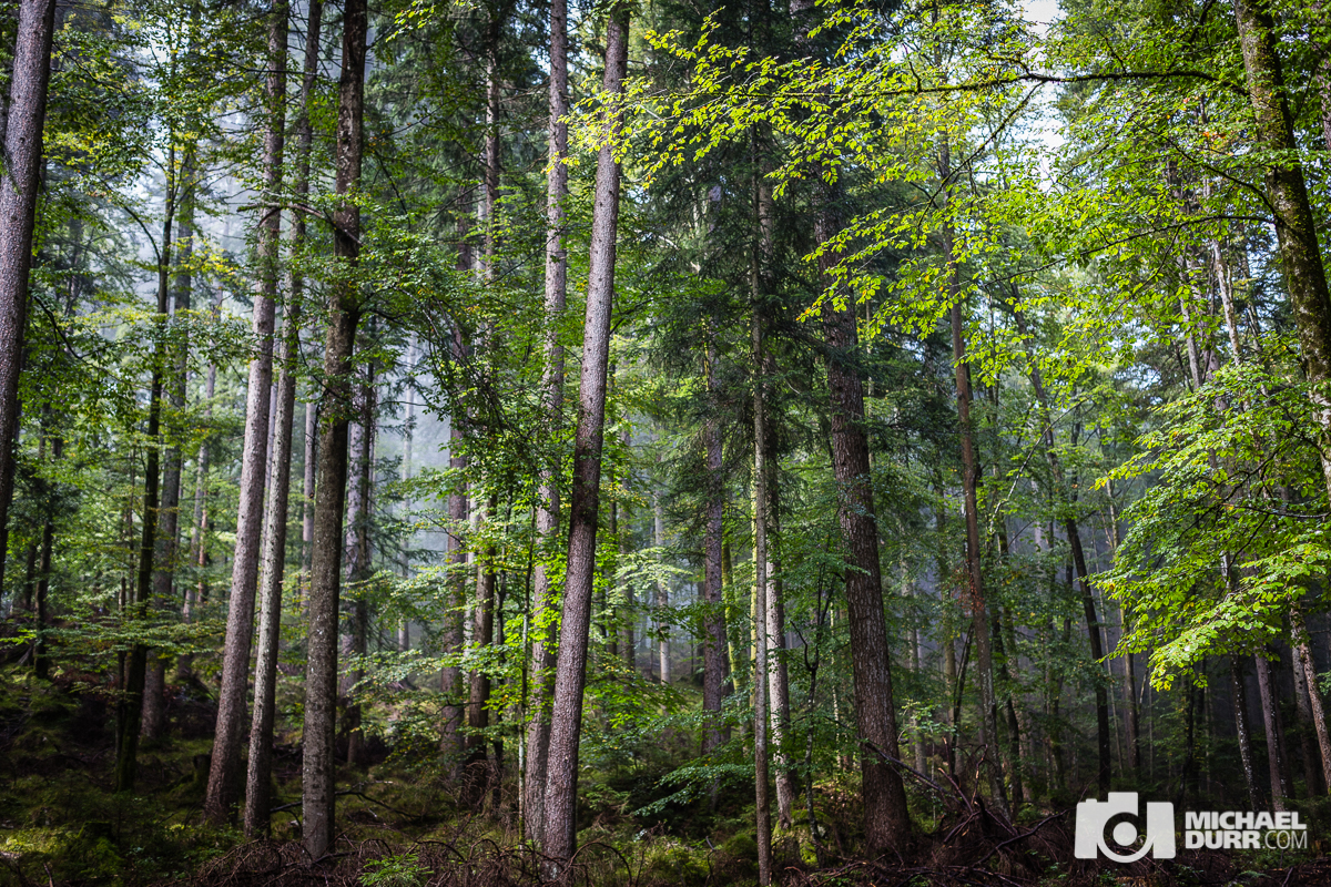 07_2014_Garmisch-Partenkirchen_2810.jpg