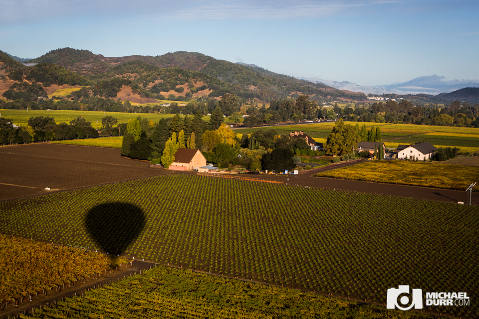 winecountry-715.jpg